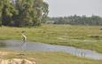 Quảng Nam bổ sung 18 danh mục dự án thu hồi đất và chuyển mục đích sử dụng đất lúa