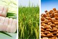 Nhờ EVFTA, các ngành hàng xuất khẩu chủ lực của Việt Nam bắt đầu hưởng lợi
