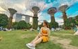 So sánh tour du lịch Tết TP HCM - Singapore 4 ngày 3 đêm: Giá chênh lệch 6 triệu đồng