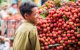 Bộ trưởng Nguyễn Xuân Cường đề nghị Trung Quốc tăng thời gian thông quan hàng ở cửa khẩu