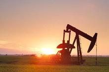 Giá xăng dầu hôm nay 8/3: Tăng trưởng nhẹ nhàng