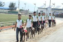 Hà Tĩnh muốn bổ sung dự án trường đua chó Xuân Thành vào quy hoạch