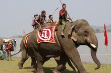 Mãn nhãn với màn đua voi giữa Tây Nguyên kỳ thú