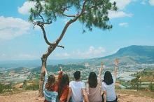 Cuối tháng 8 thảnh thơi 'ngủ quên' trên đồi Thiên Phúc Đức