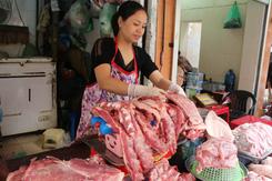 Dự báo giá heo hơi ngày 21/3: Nguồn cung trong nước vẫn được đảm bảo trước dịch tả lợn châu Phi